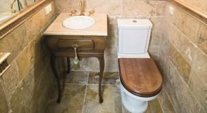 Toaleta dla gości jak z pałacu: kamień, złoto i głowa smoka