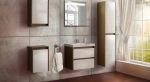 Meble Astor – nowoczesne rozwiązania do każdej łazienki