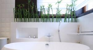 Biała łazienka dla rodziny – wnętrze ożywione zielenią