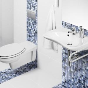 Aneta Dziedzina, Grupa Armatura: Dobór wyposażenia w łazience dla niepełnosprawnych