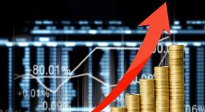 Grupa PSB odnotowuje kolejny wzrost cen materiałów budowlanych