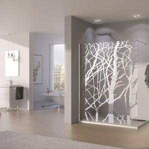Kabina otwarta na łazienkę - 15 modeli walk-in do przestronnych wnętrz