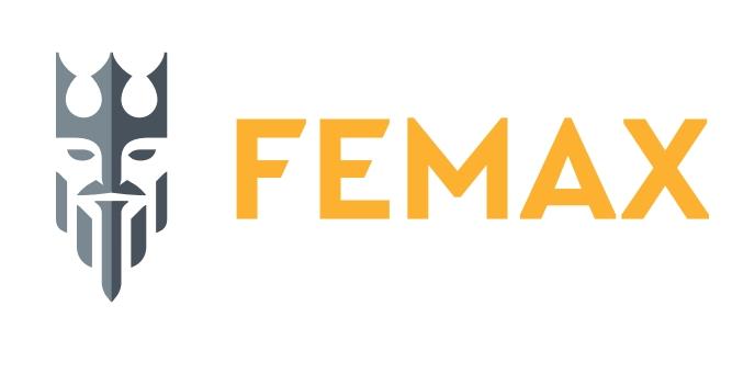 Nowe logo sieci salonów Femax.
