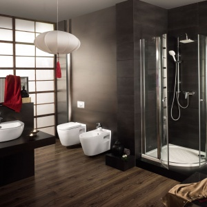 Czyszczenie baterii łazienkowych - fakty i mity