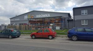 Jest 220 Mrówek w Polsce