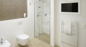 Prysznic we wnęce – tak urządzają Polacy