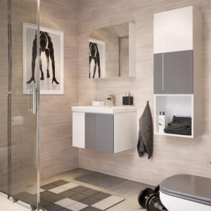Meble łazienkowe – nowa seria w modnych kolorach