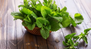 Domowe SPA - aromaterapia na letnie upały