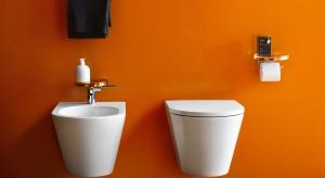 Ceramiczny komplet: miska w.c. i bidet. Przegląd 18 zestawów