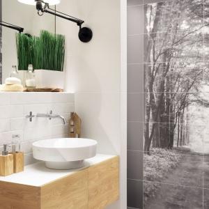 Motyw natury w łazience: 3 pomysły na ścianę