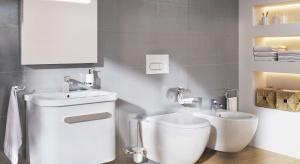 Urządzamy toaletę: abc wyposażenia WC