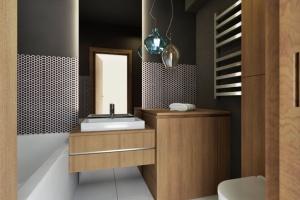 Nowoczesna łazienka: pakiet 20 projektów