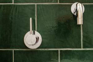 Projekt: łazienka w miejskiej oranżerii