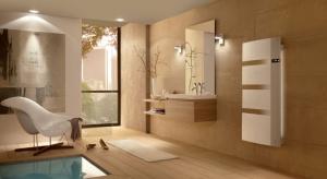 Nowoczesna łazienka: wybierz wielofunkcyjny grzejnik
