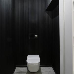 Szary minimalizm w niewielkiej toalecie
