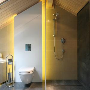 Prysznic bez brodzika: zdjęcia z łazienek Polaków
