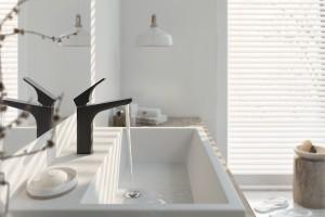 Baterie umywalkowe: 10 stojących modeli