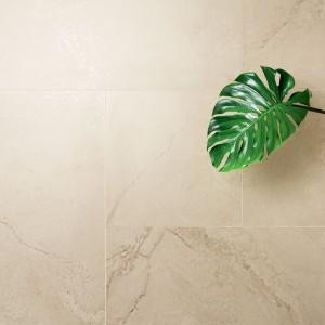 Rośliny w łazience: wybierz dla nich neutralne tło