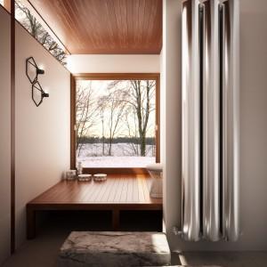 Grzejniki łazienkowe: piękne dekoracyjne modele
