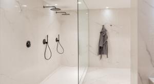 Nowoczesna łazienka: postaw na wygodny system prysznicowy