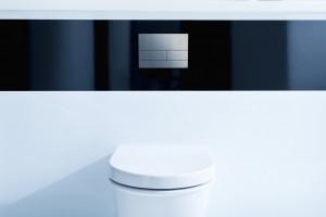 Detal w łazience: wybieramy przycisk spłukujący
