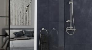 Komfortowa strefa prysznica: tak ją urządzisz