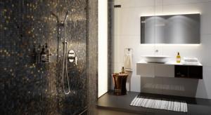 Jak powinna wyglądać strefa nowoczesnego prysznica?