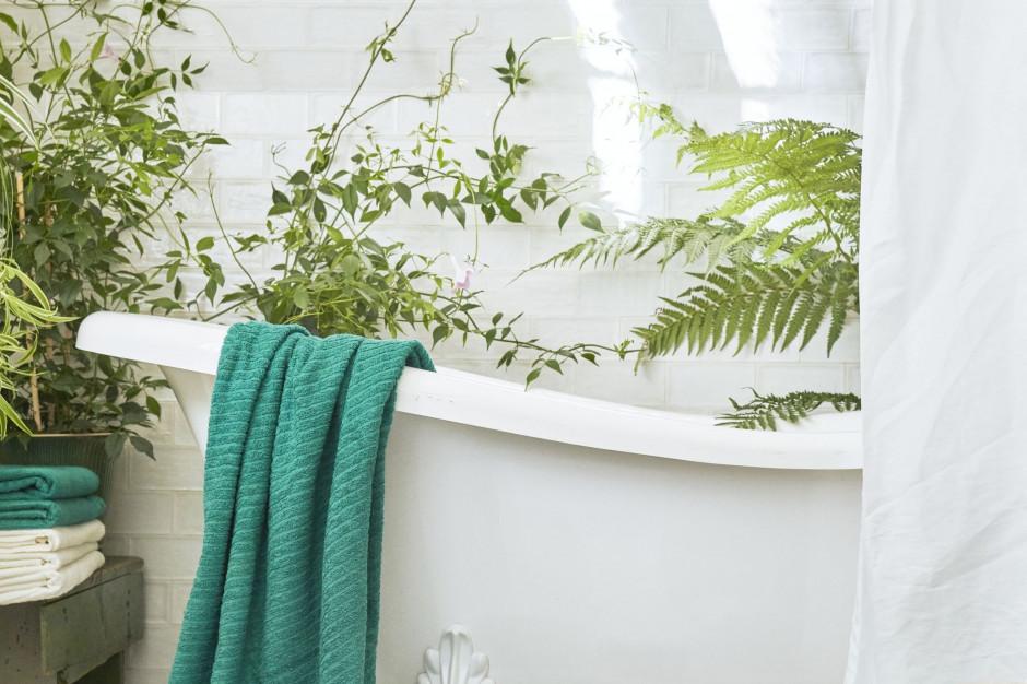 Nowe produkty Ikea także do łazienki